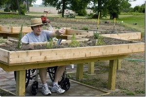 Accessible Gardening Is Great For Everyone