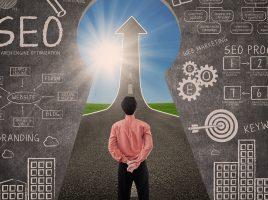 Motive pentru care afacerea ta are nevoie de optimizare seo