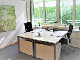 Stiti sa va alegeti scaunul de birou ergonomic?