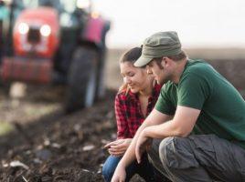 Ce afaceri poti incepe in mediul rural?